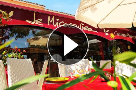 Vidéo le micocoulier Gassin